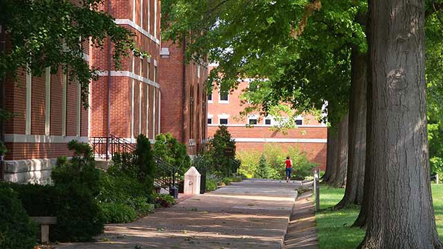 University walkway covered by the shade header image